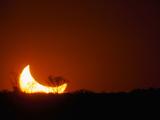 Moom Glow Fotografie-Druck von Art Wolfe