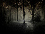 The Break Fotoprint van Philippe Manguin