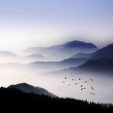 Sumun yläpuolella lentävät Pingotettu canvasvedos tekijänä Philippe Sainte-Laudy