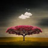 Medusa Cloud Fotografisk trykk av Philippe Sainte-Laudy