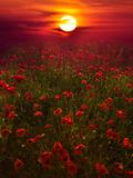Warm Sunset Toile tendue sur châssis par Marco Carmassi