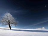 Bleu comme neige Reproduction photographique par Philippe Sainte-Laudy