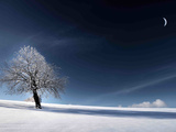 Blå som snøen Fotografisk trykk av Philippe Sainte-Laudy