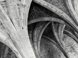 Arches Mono Photographic Print by Doug Chinnery