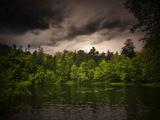 Grå-Grön Fotoprint av Philippe Sainte-Laudy