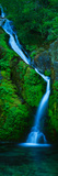 Waterfall in a Forest, Sullivan Falls, Opal Creek Wilderness, Oregon, USA Premium fototryk