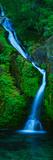 Waterfall in a Forest, Sullivan Falls, Opal Creek Wilderness, Oregon, USA Fotografie-Druck