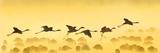 Flamingos Landing, Kenya Fotografie-Druck