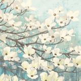 Dogwood Blossoms II Posters af James Wiens