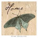 Butterfly Home Plakater af Debbie DeWitt