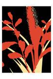 A Graphic Organic 4 Posters af Marilu Windvand