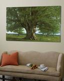 The Oak of Flagey, Called Vercingetorix Kunst af Gustave Courbet
