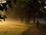 A Jogger Running in Early Morning Mist Fotografisk tryk af Norbert Rosing