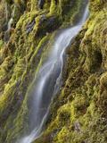 Cascading Water in Keene Valley Fotografisk trykk av Michael Melford