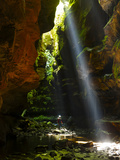 A Canyoneer and Midday Shaft of Light in a Moss Covered Passage Fotografie-Druck von Peter Carsten