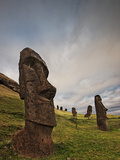 Ancient Moai Statues Dot a Hillside on Rano Raraku Crater Fotografisk tryk af Randy Olson