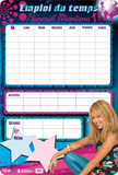 Emploi du Temps - Hannah Montana Novelty