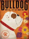 Bulldog Blooms Poster von Stephen Fowler