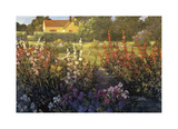 Farm Garden Giclee Print by Philip Craig