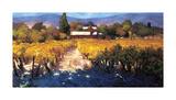 Vineyard Afternoon Impressão giclée por Philip Craig
