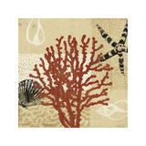 Coral Impressions III Reproduction procédé giclée par Tandi Venter