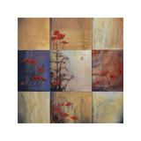Poppy and Fern Nine Patch Giclee Print by Don Li-Leger