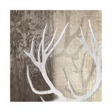Deer Lodge I Reproduction procédé giclée par Tandi Venter