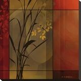 Floral Warmth Stretched Canvas Print by Edward Aparicio