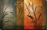Dusk to Dawn Stretched Canvas Print by Edward Aparicio
