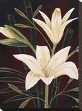Botanical Elegance I Stampa su tela di Yvette St. Amant