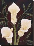 Botanical Elegance II Stampa su tela di Yvette St. Amant