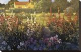 Farm Garden Stretched Canvas Print by Philip Craig