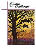 """Wild Turkeys Roosting,"" Country Gentleman Cover, November 1, 1938 Giclee Print by Paul Bransom"