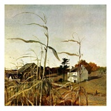 """""""Autumn Cornfield,""""October 1, 1950 Giclee Print by Andrew Wyeth"""
