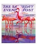 """""""Pink Flamingos,"""" Saturday Evening Post Cover, January 29, 1938 Reproduction procédé giclée par Francis Lee Jaques"""