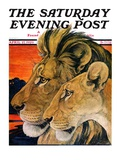 """""""Lion Pair,"""" Saturday Evening Post Cover, April 27, 1929 Giclee Print by Paul Bransom"""