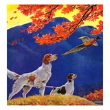 """""""Pointing to the Pheasant,""""November 1, 1937 Giclee Print by Paul Bransom"""