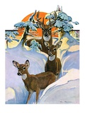 """Deer in Snow,""February 7, 1931 Giclee Print by Paul Bransom"
