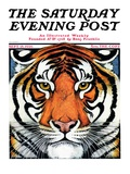 """""""Tiger Head,"""" Saturday Evening Post Cover, September 18, 1926 Giclee Print by Paul Bransom"""