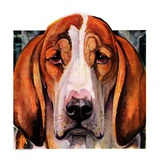 """""""You Ain't Nothing But a Hounddog,""""January 30, 1937 Giclee Print by Paul Bransom"""