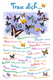 Trau Dich ... Schmetterlinge Poster