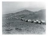 Wagon Train - Oregon Trail Wagon Train Reenactment  1935