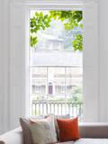 Attraverso l'albero (vetrofania) Adesivo per finestre