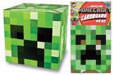Minecraft - Creeper Head Masque