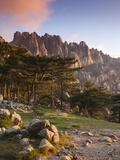 France, Corsica, Corse-Du-Sud Department, La Alta Rocca Region, Col De Bavella Pass, Aiguilles De B Reproduction photographique par Walter Bibikow