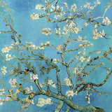 Mandelgrenar i blom, San Remy, ca 1890 Konst av Vincent van Gogh