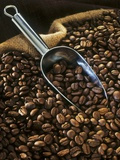 Coffee Beans with Metal Scoop in Sack Photographic Print by Vladimir Shulevsky