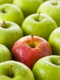 One Red Apple Among Green Apples Photographic Print by Greg Elms