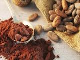 Roasted Cocoa Beans in Jute Sack and Cocoa Powder Valokuvavedos tekijänä Chris Meier