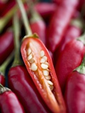 Red Thai Chillies Fotografie-Druck von Greg Elms
